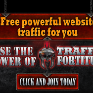 Traffic Fortitude